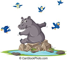charca, hipopótamo, luego