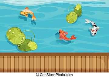 charca, waterlily, tres, pez