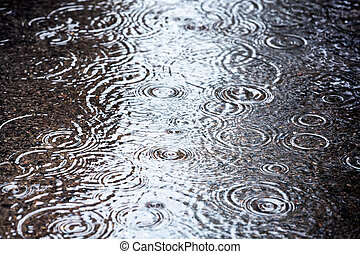 charco, lluvia