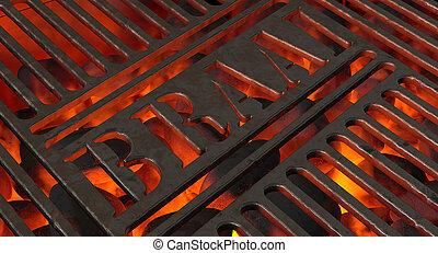 Charcoal Fire And Braai Grid