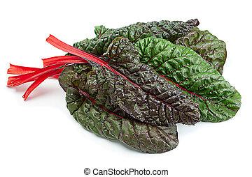 Chard leaf closeup isolated on white background
