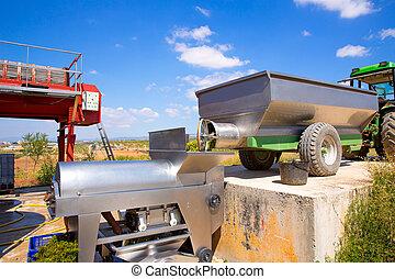 chardonnay corkscrew crusher destemmer in winemaking with...