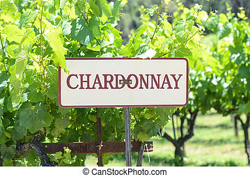 Chardonnay Grapes Sign