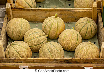 Charentais melons in a wooden box, ripe little melon on the counter of the farmers market.