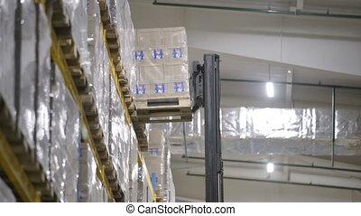 chargement, furnirure, ouvrier, élévateur, chauffeur, boîtes, chargeur, stockage, stacker, entrepôt, carton, conseils