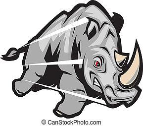 An angry, charging gray rhino