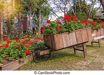 chariot, pétunia, jardin, coloré, bois, fleurs