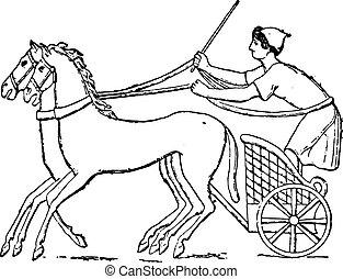 chariot, vindima, engraving.