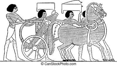 chariot, vindima, preferido, engraving.