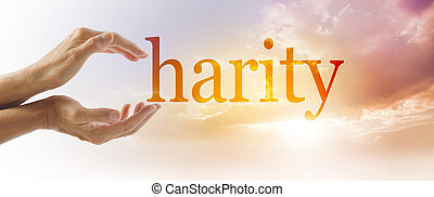 Charity Campaign Concept Banner - Female hands making the C...