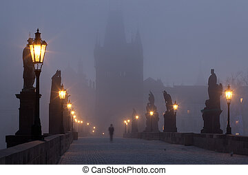 Charles Bridge - Famous Charles bridge on the river in...
