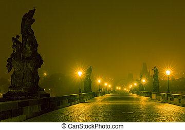 Charles Bridge in Prague (Czech Republic) at night lighting