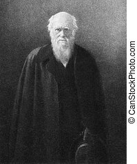 Charles Darwin (1809-1882) on engraving by J. Bollier from...