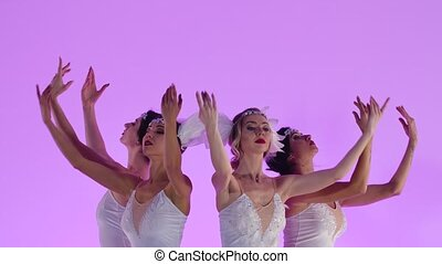 Charming feminine ballerinas are dancing in a white swan costume. A group of young women gracefully moves in slow motion on a pink background in the studio. Festive theatrical dance show. Close up