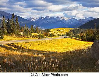 Charming glade with a yellow autumn grass and road beside in national park Jasper in Canada
