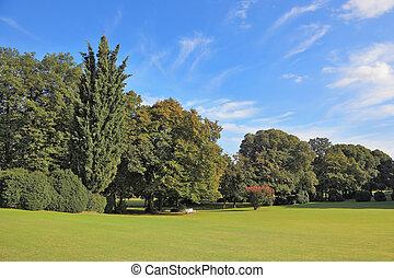 Charming green grassy lawn