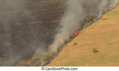charred hillside burns