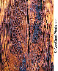 charred wood - background of weathered burned wood showing...