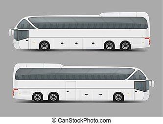 charte, autobus entraîneur, privé, réaliste, tour, vecteur, ou