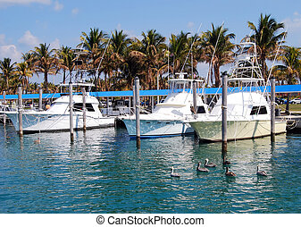 Charter Fishing Boats - Charter fishing boats docked at the...