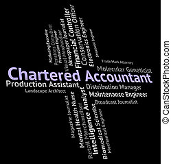 Chartered Accountant Shows Balancing The Books And Audit