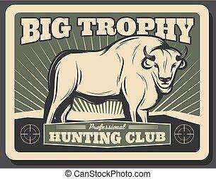 chasse, club, affiche, vecteur, retro, buffle