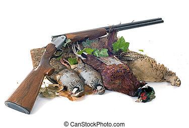 chasse, jeux