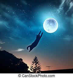 chat, attraper, lune