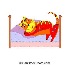 chat endormi, lit