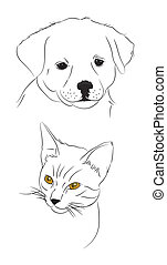chat, griffonnage, chien