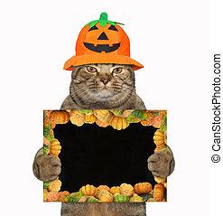 chat, halloween, affiche, vide