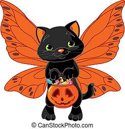 chat, halloween, mignon