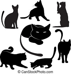chat noir, silhouette, collections