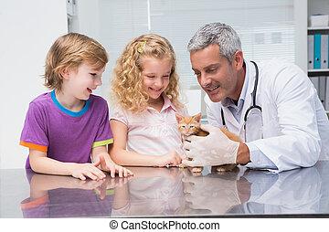 chat, sien, mignon, examiner, vétérinaire, propriétaires