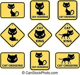 chat, signe