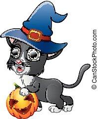 chat, sorcière, tenue, chapeau, dessin animé, citrouille
