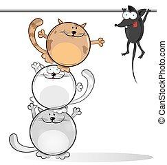 chat, souris, comique, amusement