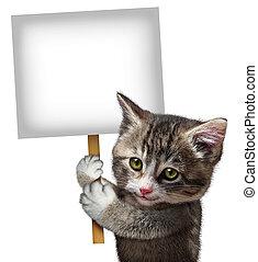chat, tenue, signe