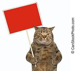 chat, vide, rouges, tenue, signe