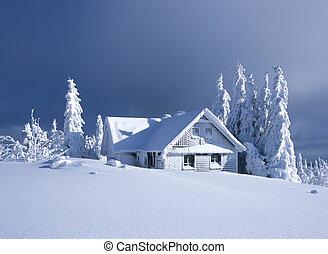 chata, w, zima, orlicke, hory, republika czeska