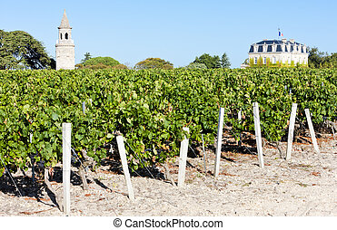 Chateau de la Tour, By, Bordeaux Region, France