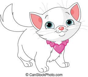 chaton, amour