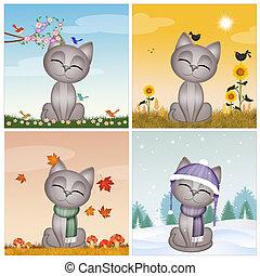 chaton, saison, quatre
