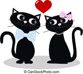 chats, amour, deux