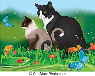 chats, deux, jardin