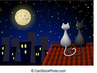 chats, deux, toit