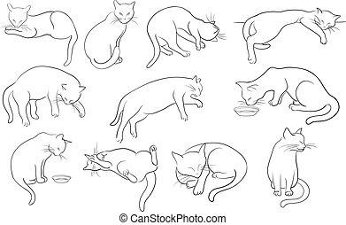 chats, ligne, ensemble, silhouette