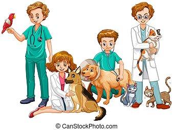 chats, médecins, vétérinaire, chiens