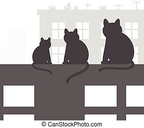 chats, toit
