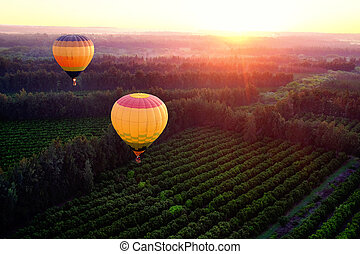 chaud, countryside., ballons, sur, air